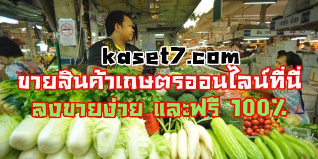 ขายสินค้าเกษตรออนไลน์กับ เกษตรเซเว่น