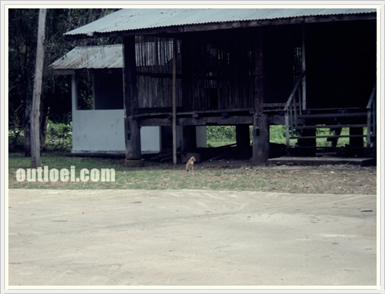 loei_home_stay040